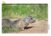 Little Marmots Carry-all Pouch