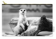 Little Meerkat Carry-all Pouch