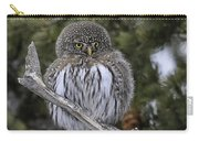Little One - Northern Pygmy Owl Carry-all Pouch