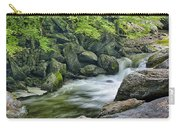 Little River Scenery E226 Carry-all Pouch