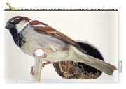 Little Sparrow Carry-all Pouch by Karen Wiles