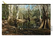 Little Withlacoochee River Carry-all Pouch