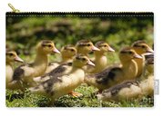 Yellow Muscovy Duck Ducklings Running Fast  Carry-all Pouch