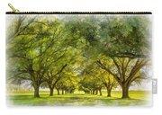 Live Oak Journey Paint Carry-all Pouch