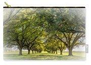 Live Oak Journey Vignette Carry-all Pouch