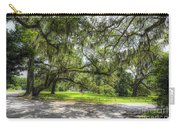 Live Oaks Dripping With Spanish Moss Carry-all Pouch