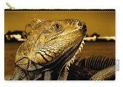 Lizard Sunbathing In Miami II Carry-all Pouch