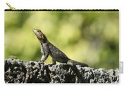Lizard On The Wall Carry-all Pouch