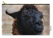 Llama Face Carry-all Pouch