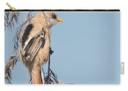 ln06 Bearded Reedling Juvenile Carry-all Pouch