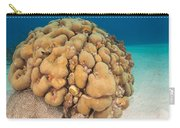 Lobed Star Coral Carry-all Pouch