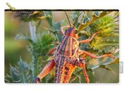 Locust And Thistle 2am-110423 Carry-all Pouch