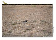 Lone Killdeer Carry-all Pouch
