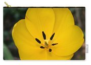 Lone Yellow Tulip Carry-all Pouch