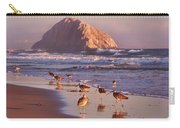 Long Billed Curlew - Morro Rock Carry-all Pouch