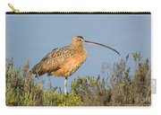 Long-billed Curlew Numenius Americanus Carry-all Pouch