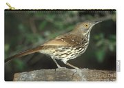 Long-billed Thrasher Carry-all Pouch