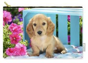 Long Eared Puppy In Front Of Blue Box Carry-all Pouch