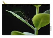 Long Legged Creeper Carry-all Pouch