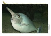 Long Nose Fish Carry-all Pouch