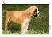 long tailed Boxer Puppy in the sun Carry-all Pouch