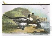 Long Tailed Duck Carry-all Pouch