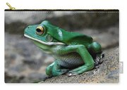 Looking Green Carry-all Pouch
