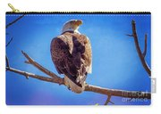 Looking Right Carry-all Pouch by Bob Hislop