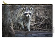 Louisiana Raccoon II Carry-all Pouch