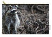 Louisiana Raccoon Carry-all Pouch