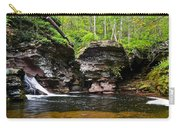 Lower Adams Falls Carry-all Pouch