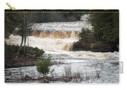 Lower Falls Carry-all Pouch