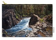 Lucia Falls Downstream Carry-all Pouch