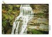 Lucifer Falls Treman Park Carry-all Pouch