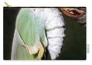 Luna Moth Actias Luna Newly Hatched Carry-all Pouch