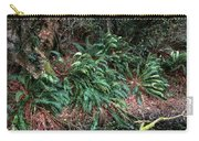 Lush Ferns Of The Forest Carry-all Pouch