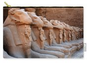 Luxor Temple 3 Carry-all Pouch