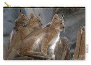 Lynx Trio Carry-all Pouch