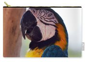 Macaw Head Study Carry-all Pouch