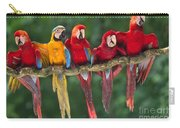 Macaws Carry-all Pouch