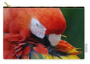 Macaws Of Color26 Carry-all Pouch