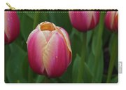 Mackinac Tulip 10386 Carry-all Pouch