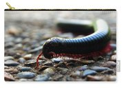 Macro  Millipede Carry-all Pouch