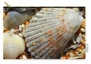 Macro Shell On Sand 4 Carry-all Pouch by Riad Belhimer