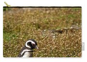 Magellanic Penguin On Martillo Island In Patagonia Carry-all Pouch