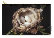 Magnificent Hummingbird Eggs Carry-all Pouch