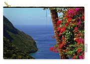 Magnificent Ladera Carry-all Pouch