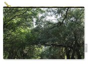 Magnolia Plantation Road Carry-all Pouch