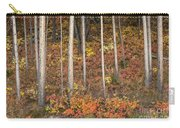 Majestic Autumn In The Grand Tetons Carry-all Pouch