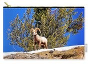 Majestic Big Horn Sheep Carry-all Pouch